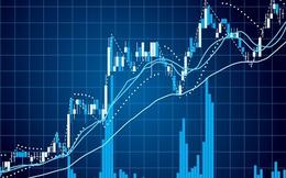 PGT Holdings tính phát hành hơn 5 triệu cổ phiếu ưu đãi hoàn lại