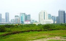Chuyển mục đích sử dụng hơn 137ha đất trồng lúa sang đất phi nông nghiệp để thực hiện dự án tại Hưng Yên