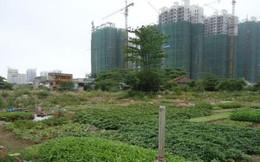 TP. HCM: Duyệt hệ số điều chỉnh giá đất 1 loạt các dự án trọng điểm