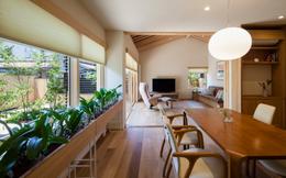 Báo Mỹ ấn tượng với cách bài trí, thiết kế không gian căn nhà tuyệt đẹp của cặp vợ chồng già người Nhật