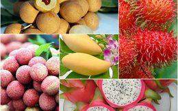 Xuất khẩu rau quả vẫn còn 'nút thắt'