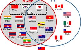 RCEP – giải pháp thay thế cho TPP và bài toán mới của Việt Nam