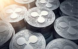 Giá ripple giảm 34% trước nghi vấn thông tin đồng tiền này được sử dụng trong các ngân hàng chỉ là bịa đặt