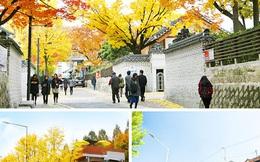 Hàn Quốc - Thị trường hấp dẫn của du khách Việt