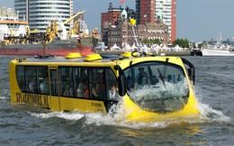 Xe bus đường sông: Làm gì để phát huy hiệu quả?