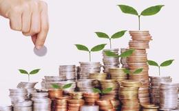 Giảm lãi suất giúp dòng vốn rẻ tiếp tục được duy trì, TTCK điều chỉnh là cơ hội cho nhà đầu tư tham gia giải ngân
