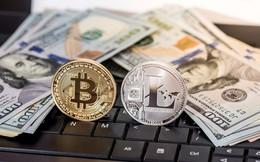 """Tăng giá mạnh gấp 10 lần bitcoin, đây mới là """"quán quân"""" tăng giá phá đỉnh của thị trường tiền số"""
