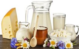 Tại sao người Việt cần sử dụng sữa, sữa chua, phô mai mỗi ngày?