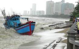 Bão số 12: Điều gấp tàu cảnh sát biển đang trực APEC đi cứu 11 thuyền viên gặp nạn