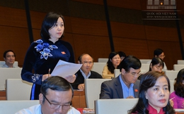 [TRỰC TIẾP]: Quốc hội thảo luận về KT-XH và ngân sách nhà nước