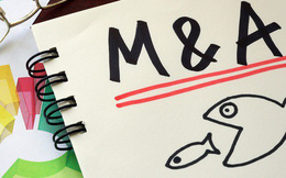 Ngành hàng nào sẽ thống lĩnh thị trường M&A năm 2018?