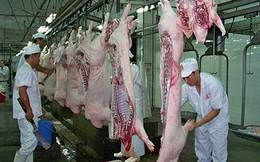 Nguồn cung thịt lợn toàn cầu dự báo tăng