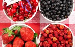 9 thực phẩm tốt cho tuyến tụy bạn nên ăn hàng ngày