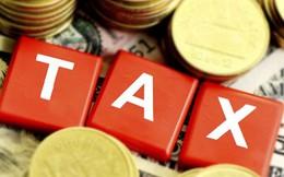 Đề xuất sửa đổi biểu thuế xuất, nhập khẩu, Bộ Tài chính dự kiến tăng thu 984 tỷ đồng