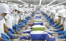 Lỡ cơ hội xuất khẩu 100 tấn mỡ cá vì thủ tục