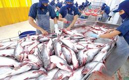 Nam Việt (ANV) phát hành cổ phiếu thưởng tỷ lệ 90%