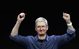 Không cần đến iPhone, iPad hay Mac, chỉ riêng mảng kinh doanh này của Apple đã đủ lớn hơn rất nhiều hãng hàng không trên thế giới
