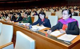 Tp.HCM được tự quyết mức thu nhập cho nhân tài