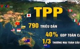 Triển vọng thu hút FDI vào Việt Nam nếu không có TPP