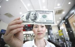 Việt Nam đã chi khoảng 7,5 tỷ USD trả nợ gốc và lãi vay