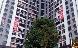 Bùng nổ tranh chấp chung cư, Bộ Xây dựng gửi văn bản báo cáo lên Thủ Tướng