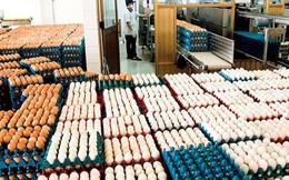 Bắt đầu nhập khẩu trứng và muối từ 17/4