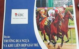 Cần Thơ cho nghiên cứu trường đua ngựa 500 triệu USD