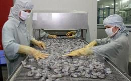Australia nới lỏng lệnh cấm nhập khẩu tôm, sản phẩm từ tôm