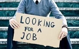 Đây là khoảng thời gian và ngày hợp lý nhất để xin việc, cơ hội tăng gấp 5 lần nếu xin vào đúng khoảng giờ này