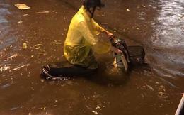 Chiều tối nay, Hà Nội lại mưa to