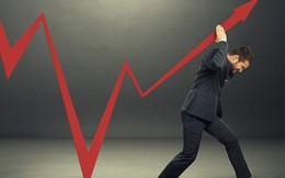 Hàng loạt cổ phiếu giảm sàn trong phiên chiều, VnIndex vẫn tăng hơn 5 điểm nhờ ROS, VNM, GAS và cổ phiếu ngân hàng