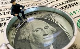 """Wells Fargo: Đồng USD sẽ """"cài số tiến"""" vào cuối năm"""