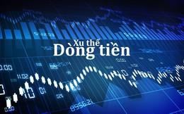 Xu thế dòng tiền: Thị trường cần thêm thời gian tích lũy