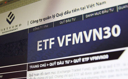 Chứng chỉ quỹ ETF nội đầu tiên tại Việt Nam tăng mạnh hơn VN-Index trong 6 tháng đầu năm