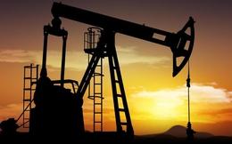 Tương tự dầu mỏ của thế kỷ 18, đây là một nguồn tài nguyên vô hạn, trị giá nhiều tỷ đô đang chờ được khai thác!