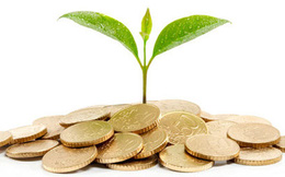 Gemadept phát hành thành công 108,8 triệu cổ phiếu hoán đổi hơn 1.100 tỷ đồng nợ vay