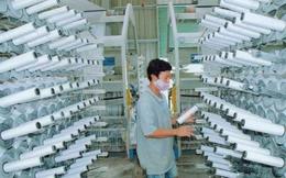 Bao bì Nhựa Sài Gòn (SPP) dự kiến phát hành gần 4 triệu cổ phiếu trả cổ tức và cổ phiếu thưởng tổng tỷ lệ 30%