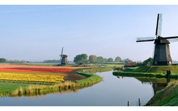 Tại sao Hà Lan chỉ có 17 triệu dân, diện tích nhỏ, biến đổi khí hậu ảnh hưởng lớn nhưng XK nông sản lại gấp 3 Việt Nam?