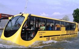 Video: Toàn cảnh tuyến buýt sông đầu tiên ở Sài Gòn trong ngày khai trương