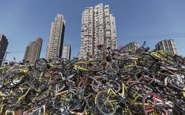 Xe đạp chất thành núi như rác và tương lai tăm tối của ngành công nghiệp chia sẻ xe đạp Trung Quốc