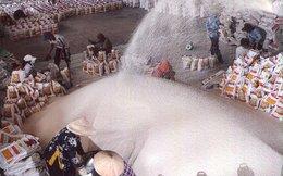 Đề xuất bãi bỏ hàng loạt điều kiện kinh doanh xuất khẩu gạo