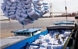 Nâng mục tiêu xuất khẩu gạo lên 5,6 triệu tấn