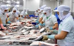 """Thị trường cá tra giống """"hạ nhiệt"""" trong khi giá tôm lại tăng"""