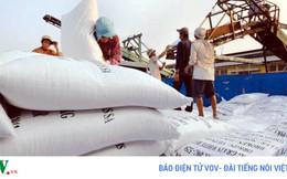 """Nông dân và doanh nghiệp cần đi """"cùng thuyền"""" trong xuất khẩu gạo"""