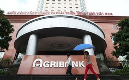 Kiểm toán chỉ ra nhiều sai sót tại Agribank