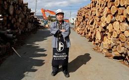 6 năm sau thảm họa Fukushima: Người dân bắt đầu về nhà