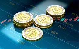 Quản lý quỹ tiền số BKCM: Đây là thời điểm tốt nhất để mua vào bitcoin
