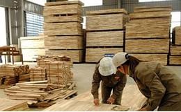 Xuất khẩu lâm sản Việt Nam lần đầu tiên đạt 8 tỷ USD/năm