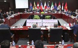 Lựa chọn lý trí của 11 thành viên CPTPP hóa giải sự khó xử khi đứng giữa hai cường quốc