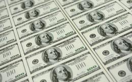 [Video] Mưa tiền ở Mỹ
